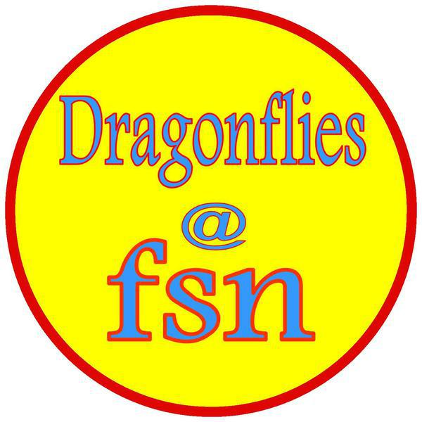 Dragonflies at FSN bereavement service