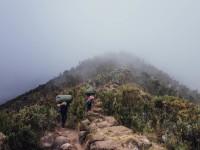 Dain Jensen Kilimanjaro Climb