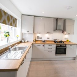 Lunsford Show Home Kitchen